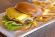 Cheeseburger and Fries - 79268109