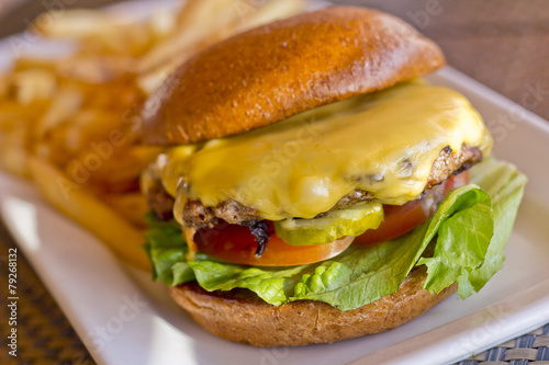 Cheeseburger and Fries - 79268132