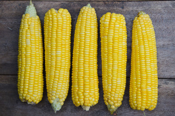 Fresh Sweet Corn.