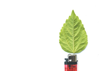 lighter with green leaf, burn concept