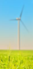 Wind turbines in a wheat field