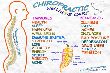 chiropractic wellness care therapy related words
