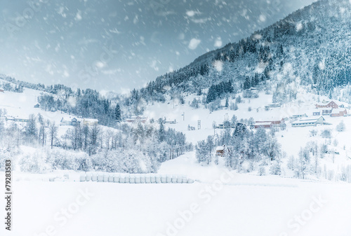 House in the mountains on winter - 79283583