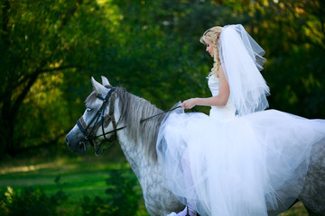Beautiful bride on a white horse