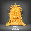 Throne made of Cricket bats - 79290914
