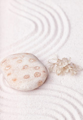 A  spotty rock and dried seaweed in the fine sand of the zen gar