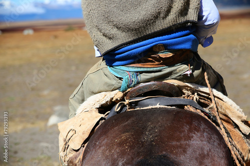 Back view of gaucho riding horse - 79293393