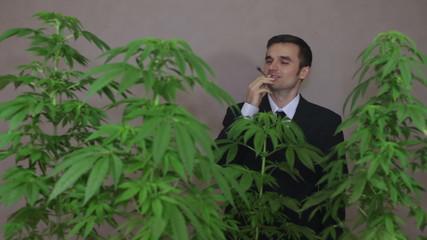 Successful businessman smoking Marijuana