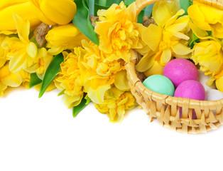 Osterglocken, Tulpen, Ostereier
