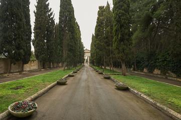 Viale del Cimitero