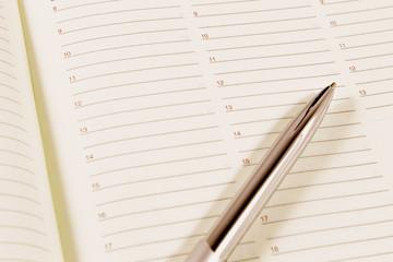 Agenda and silver pen