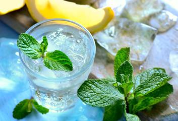 Mint and lemon soda