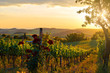 Leinwanddruck Bild - Tuscany vineyards in fall