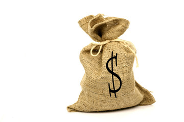moneybag on a white background