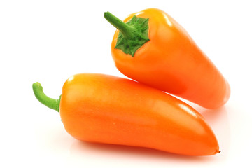 two orange peppers(capsicum) on a white background
