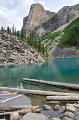 trunks on Moraine Lake in Canada