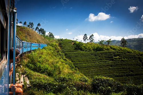 train from Nuwara Eliya to Kandy among tea plantations in the hi - 79322528