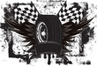Racing Wings Insignia - 79323728
