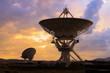 Picture of Radio Telescopes - 79324538