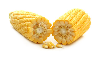 fresh of corn isolated on white background