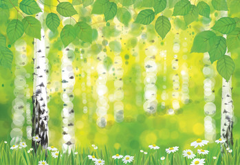 Vector birch forest on spring bokeh background.
