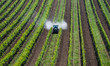 Leinwanddruck Bild - Traktor sprueht Pestizide im Weingarten