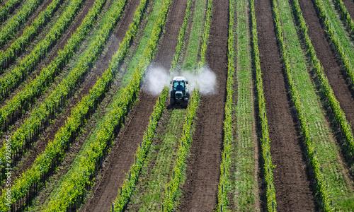 Leinwanddruck Bild Traktor sprueht Pestizide im Weingarten