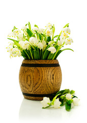 snowdrops in a wooden cask