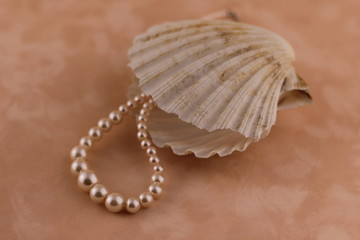 Pearl with a shell