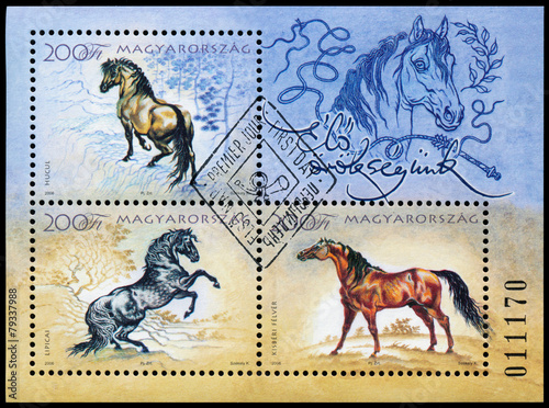 Stamp printed in Hungary shows hungarian horses Poster