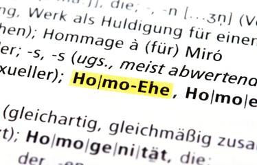 Homoehe - Konzept