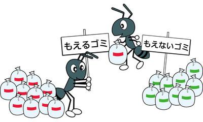 アリのゴミ分別