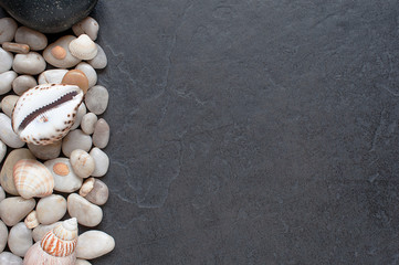 Stones and shells on a dark background