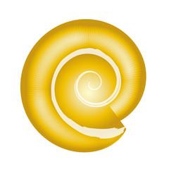 Ammonit - Fossile Schnecke - Kreis in Gold