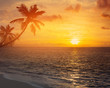 Leinwanddruck Bild - Art palm trees silhouette on sunset tropical beach
