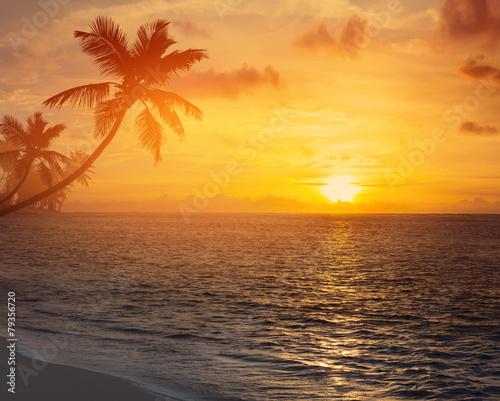 Leinwanddruck Bild Art palm trees silhouette on sunset tropical beach