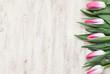 Obrazy na płótnie, fototapety, zdjęcia, fotoobrazy drukowane : Tulipani