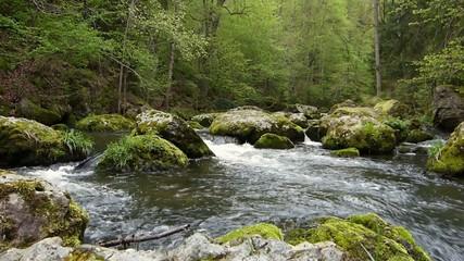 Ein reißender Fluss fließt durch die Felsen im Wald