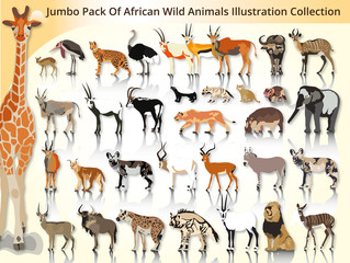 jumbo pack of african wild animals illustration collection