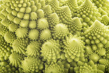 Textura del romanesco broccoli fresco