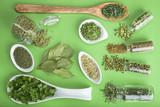 Hierbas y especias verdes sobre un fondo del mismo color