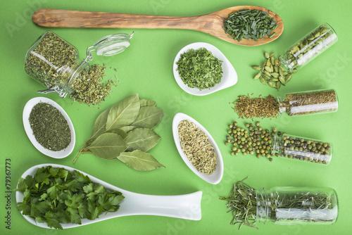 Foto op Aluminium Kruidenierswinkel Hierbas y especias verdes sobre un fondo del mismo color
