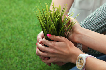 Close-up of people hands holding plant together