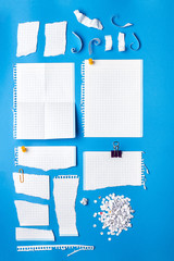 Collection of pieces of paper in various shapes.