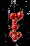 pomodorini splash