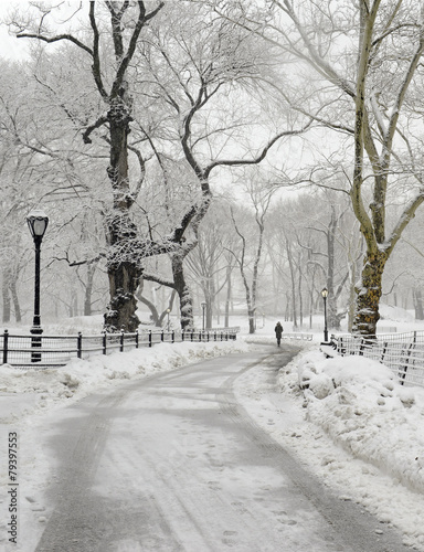 Central Park in the snow, Manhattan New York