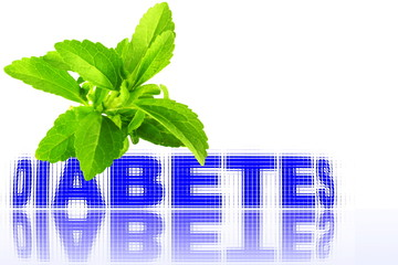 stevia herbs with diabetes word closeup in pure white background