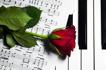 Gül ve Piyano