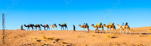 Leinwandbild Motiv Camel caravan on the Sahara desert in Morocco