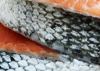 salmon fish steaks detail